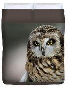 Short Eared Owl Portrait Duvet Cover