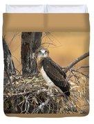 Short-toed Snake Eagle Circaetus Gallicus Duvet Cover