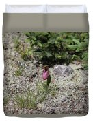 Showy Lady's Slipper 3 Duvet Cover