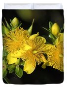 Shrubby St Johnswort Dsmf094 Duvet Cover