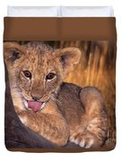 Shy African Lion Cub Wildlife Rescue Duvet Cover