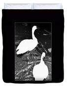 Shy Swans Duvet Cover