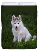 Siberian Huskie Pup Duvet Cover