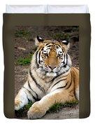 Siberian Tiger Duvet Cover