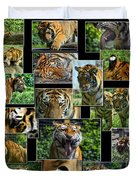 Siberian Tiger Collage Duvet Cover