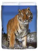 Siberian Tiger No. 1 Duvet Cover