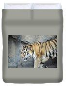 Siberian Tiger Panthera Tigris Altaica Usa Duvet Cover