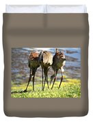 Sibling Rivalry 2 Duvet Cover