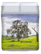 Sierra Foothills And Clouds Duvet Cover