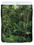 Sierra Palm Trees El Yunque Puerto Rico Duvet Cover