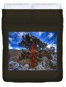 Sierra Pine Duvet Cover