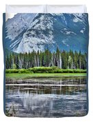 Silver Reflections Duvet Cover