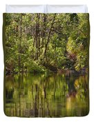 Silver Springs Nature Park Florida Duvet Cover by Christine Till