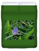 Silver Studded Blue Butterfly Duvet Cover