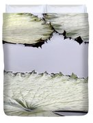 Silvery Sage Green Lily Pads Duvet Cover