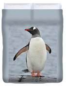 Simply Gentoo Duvet Cover