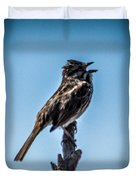 Singing Song Sparrow Duvet Cover