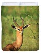 Single Grant's Gazelle Duvet Cover