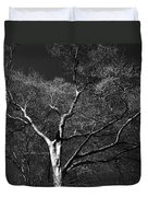 Single Tree With New Spring Leaves In Black And White Duvet Cover