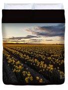Skagit Daffodils Sunset Sunstar Duvet Cover