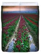 Skagit Valley Tulips Duvet Cover