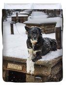 Skeeter The Sled Dog  Duvet Cover