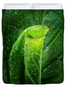 Skunk Cabbage Duvet Cover