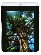 Skyward Spruce Duvet Cover