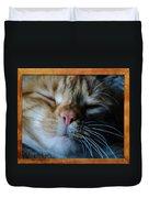 Sleeping Abby Framed Duvet Cover