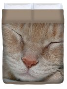 Sleeping Cat Face Closeup Duvet Cover