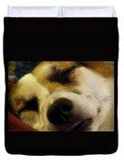 Sleeping Corgi Duvet Cover