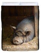 Sleeping Pig Duvet Cover