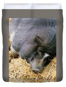 Sleeping Sow Duvet Cover
