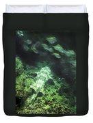 Sleeping Wobbegong And School Of Fish Duvet Cover