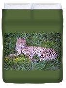 Sleepy Cheetah Duvet Cover