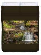 Small Falls At Parfrey's Glen Duvet Cover