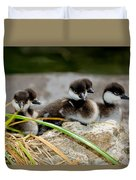 Smew Ducklings On Shore Duvet Cover