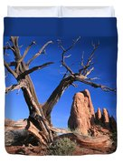 Snag At  Fiery Furnace Labyrinth Arches Duvet Cover