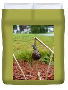 Snail Out On A Limb  Duvet Cover