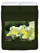 Snapdragons Group Of Yellow Cream Duvet Cover