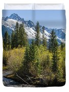 Sneffles And Stream II Duvet Cover