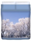 Snow And Ice Blanket Cottonwood Trees Duvet Cover