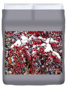 Snow Capped Berries Duvet Cover