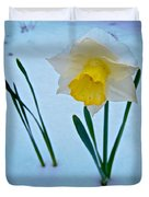 Snow-capped Daffodil On May 21 Near Des Chutes National Forest-or  Duvet Cover