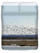 Snow Geese Taking Off At  Loess Bluffs National Wildlife Refuge Duvet Cover