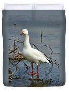 Snow Goose Duvet Cover