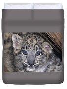 Snow Leopard Cub Endangered Duvet Cover