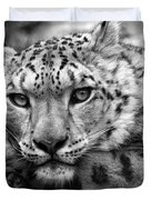 Snow Leopard In Black And White Duvet Cover