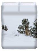 Snow Leopard Periscope Duvet Cover