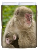 Snow Monkeys, Mother With Her Baby Duvet Cover